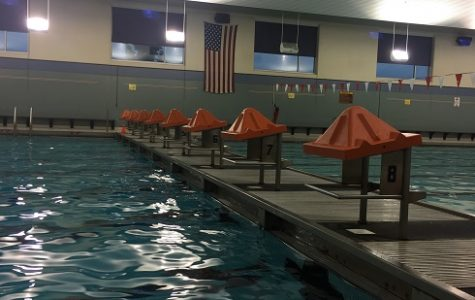 Swimming, diving team builds off of previous season