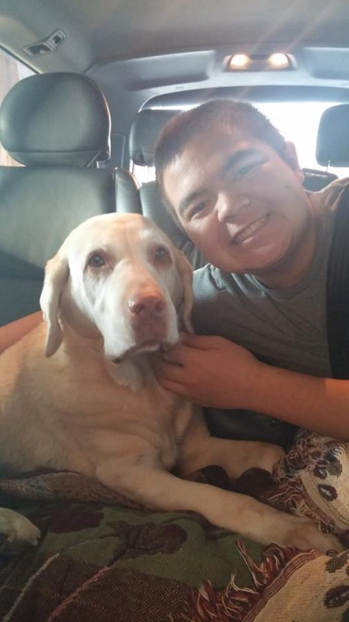 Sophomore has big heart for animals