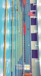 Swim coaches switch for 2018-19