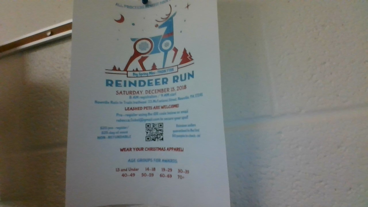 Reindeer Run is raising money for the Mini-THON.